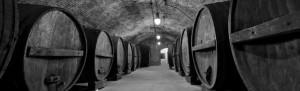 Wine Tour Limo Services San Antonio Buses Tasting discount chartes tours